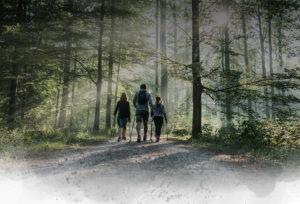 Newfeel | Challenge Marche Nordique 2018